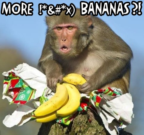 more-bananas1