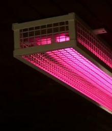 pinklights-sm
