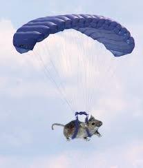 paratrooper1