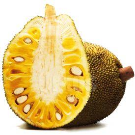 jackfruit-s