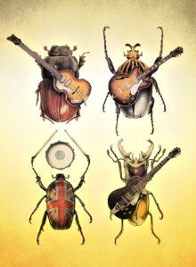 beetles-s