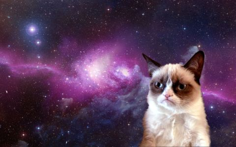 grumpy-cat-in-space-s