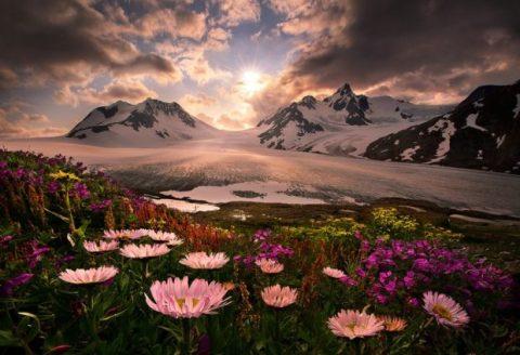 Alaska-sm