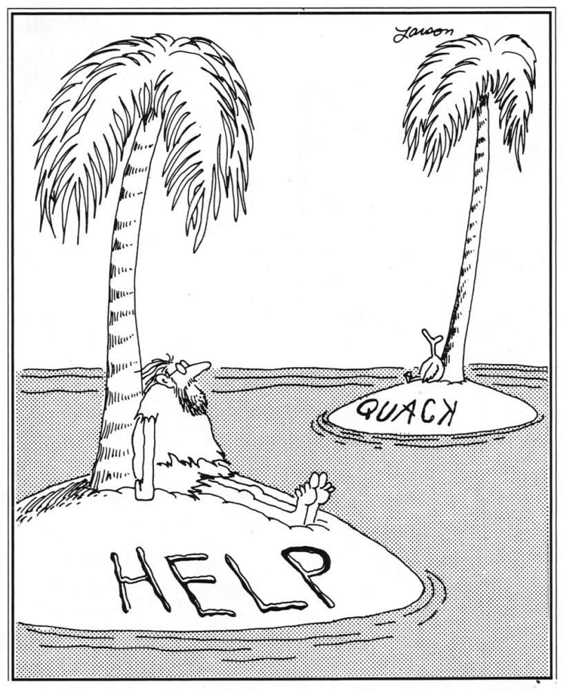 Image result for Gary Larson